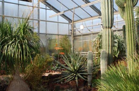 Botanischer Garten Stadt Chemnitz